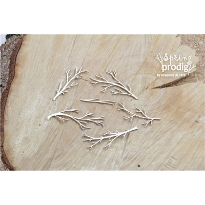 Spring Prodigy - Bare branches