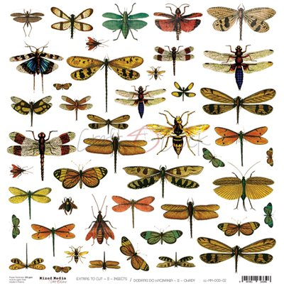 Insects - element sheet